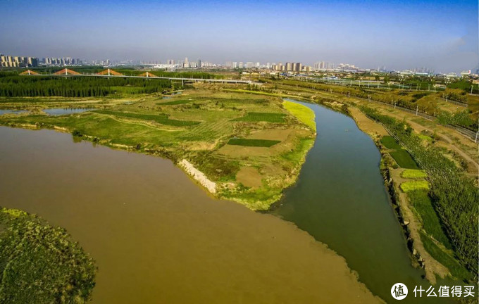 泾河与渭河交界处,一清一浊的泾渭分明盛景