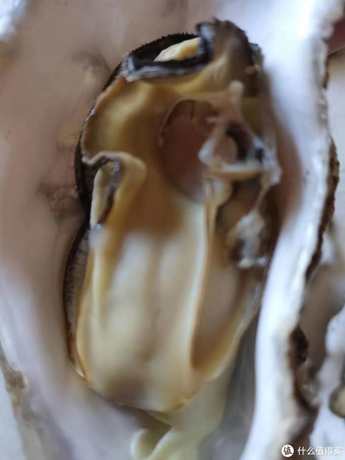 金秋十月,正是吃生蚝的好季节