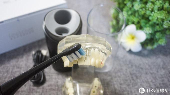 新体验:自带杀菌功能的口腔卫士—feelove扉乐声波电动牙刷F1