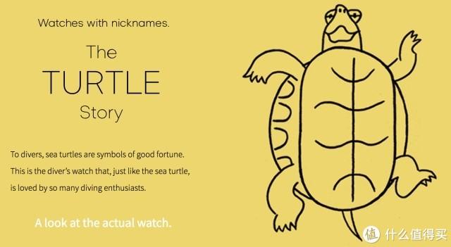 """精工手表的故事(三):""""乌龟(国内通常叫做鲍鱼)"""""""