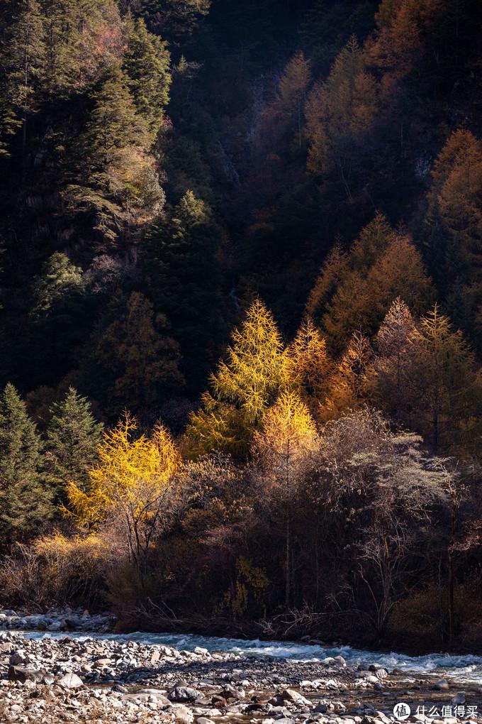 成都周边寻秋,一日小环线