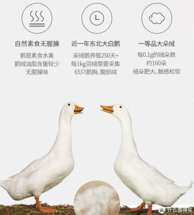 给你一整个冬天的温暖:日式大品牌鹅绒被使用体验