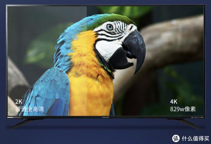 ▲ 夏普四色技术的真4K面板带来的才是真清晰。