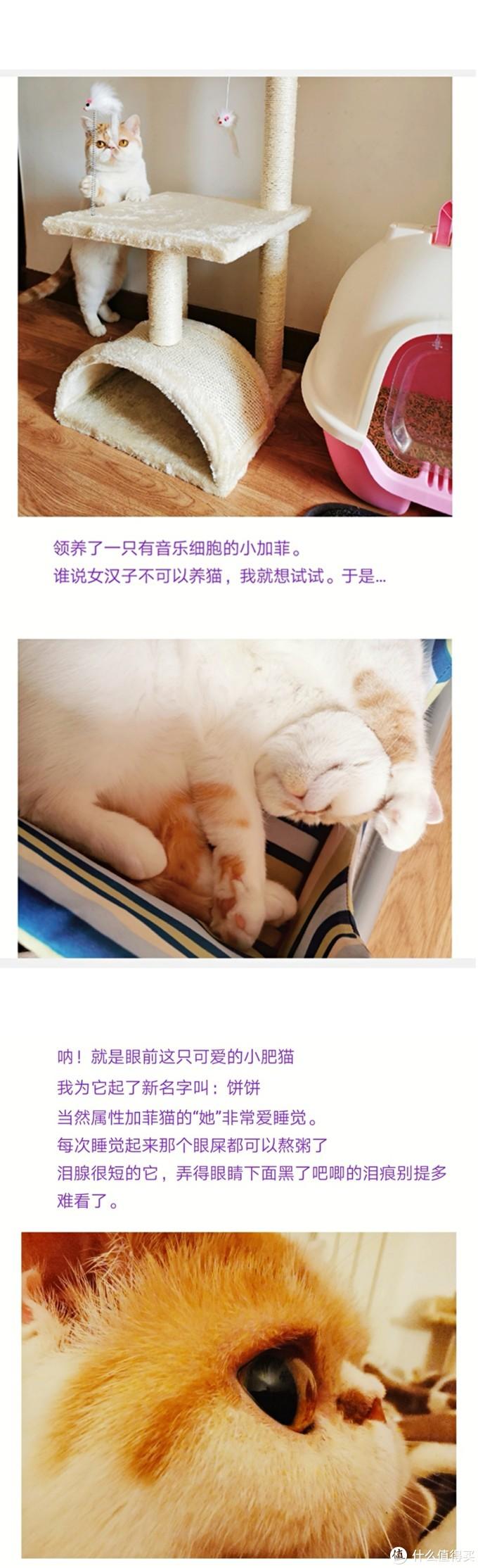 女汉子推荐如此好用的擦猫泪痕神器你值得拥有。