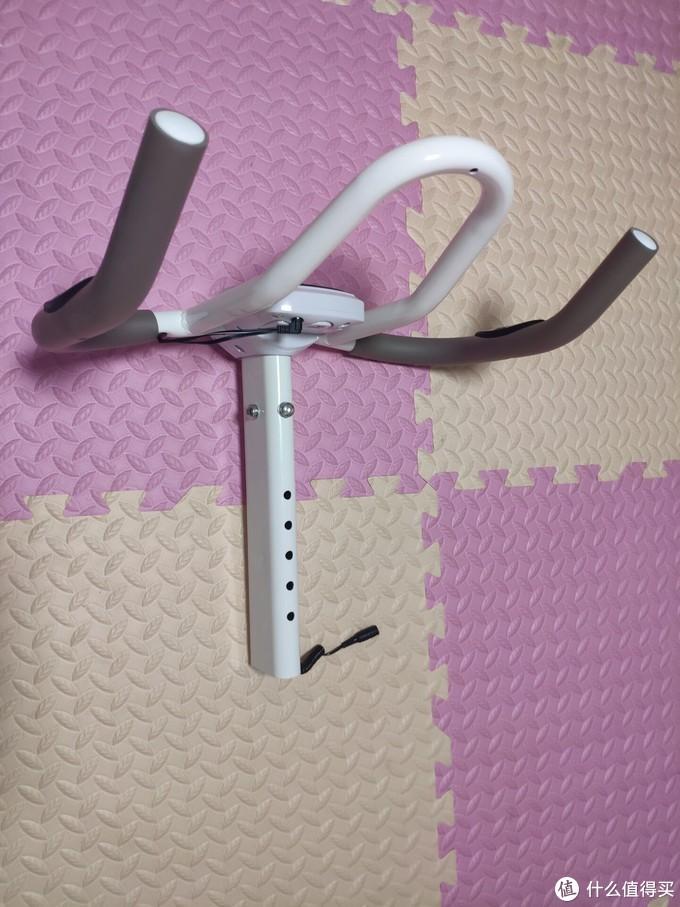 减脂与增肌共存 不占地方又安静 家庭健身利器 亿健动感单车D8 评测报告