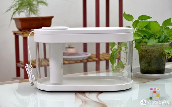 小米新品几何画法懒人鱼缸:两栖共生,你的桌面有新宠啦