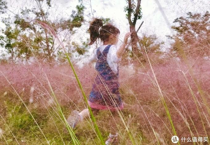 上海的秋天,把美全都给了公园!!