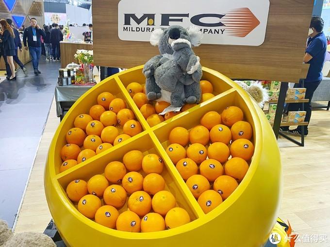 澳洲橙子,无试吃。