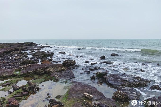 清晨退潮的时候,海边的礁石可以往里走,有钓鱼的大叔和捡生蚝的阿姨