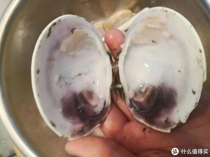 我就,喜欢吃点带壳的!大连逛菜市场之大蛤炒鸡蛋+海蛎子+丹东黄蚬子