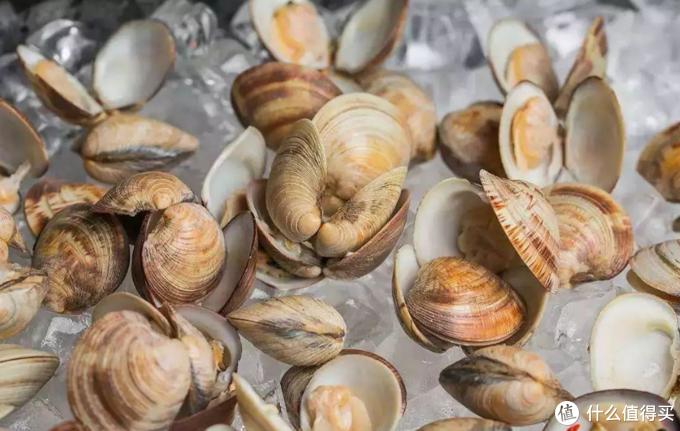 大海的味道每一口都充满了新鲜,到青岛不吃海鲜等于白来!
