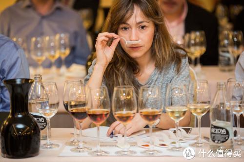 柏觅红酒 | 买酒时,这些葡萄酒术语不能不知道!