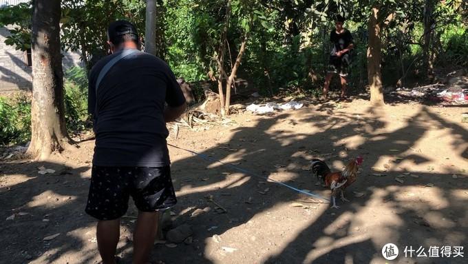 掏出我的大公鸡!战斗!| 巴厘岛10元极限穷游实录(2)