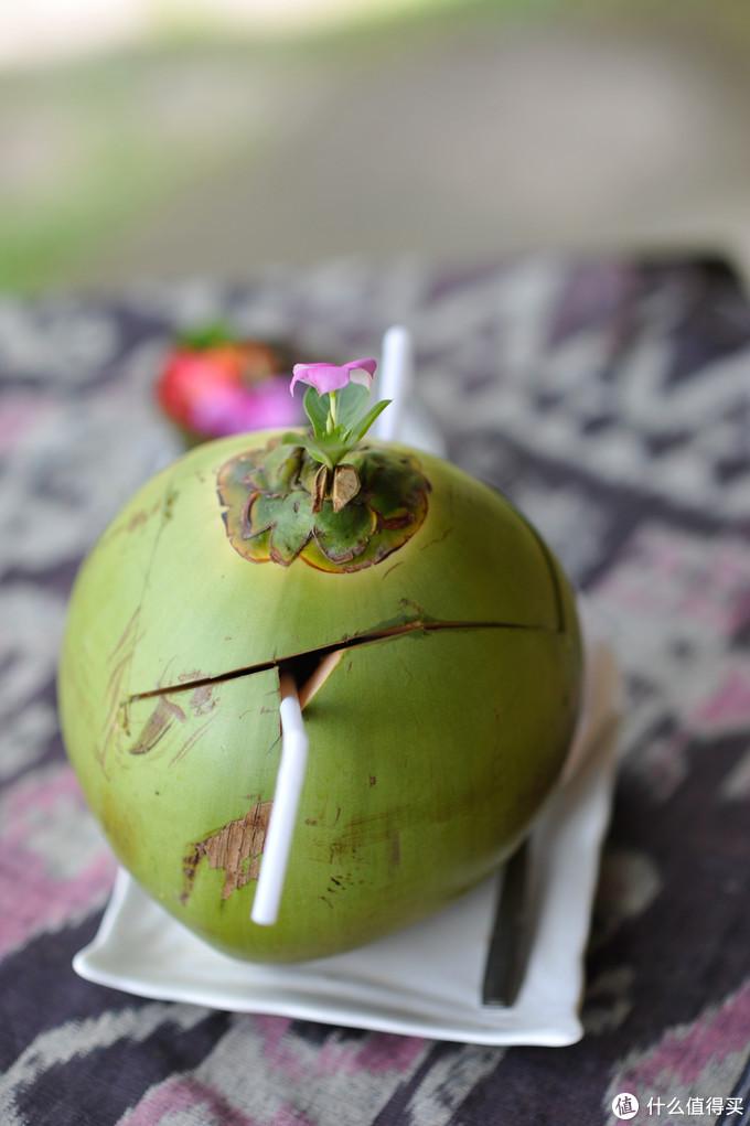 巴厘岛德格拉朗梯田椰子