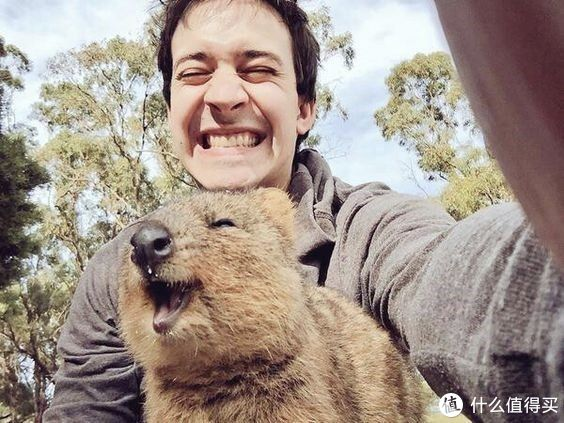 就算为了好好睡,也值得去上一次西澳