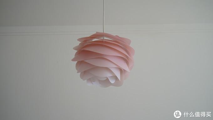 漂亮的玫瑰餐吊灯
