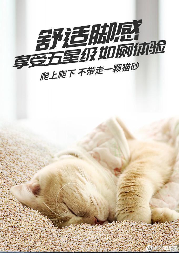双11为猫主囤货-LORDE里兜 豆腐猫砂2.0升级版 6L装 晒单