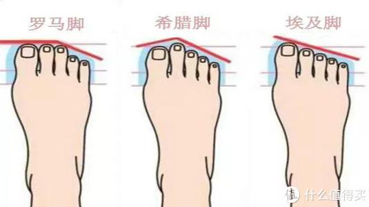 三种常见脚型图