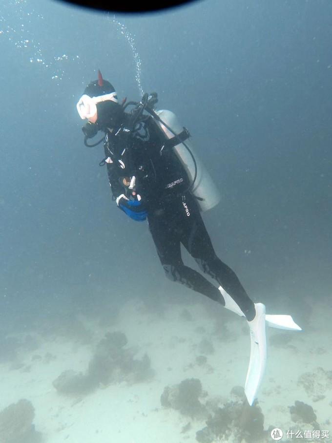 轻装上阵去潜水,带这些东西就够啦-----百潜新司机的潜水装备清单