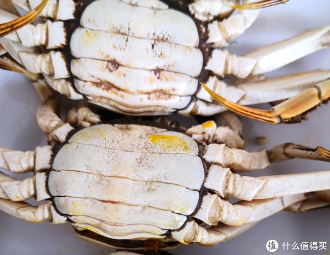 母蟹子钳子上毛比较少。而且有黄。感觉比公蟹好吃不少。