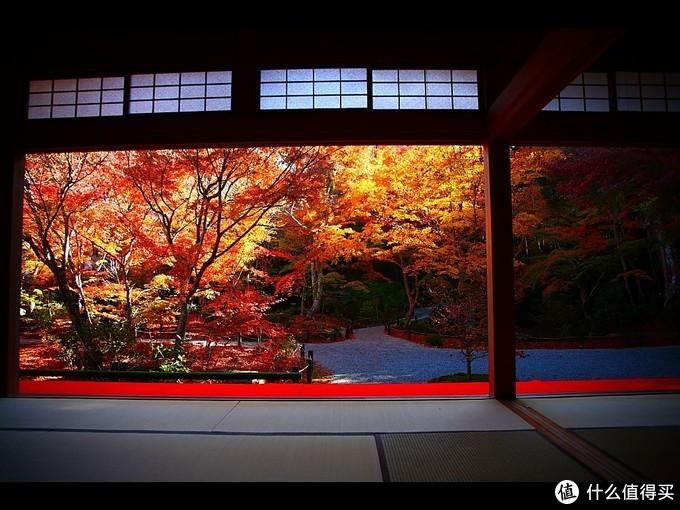 【攻略】四季流转,在秋季的京都遇见红叶狩
