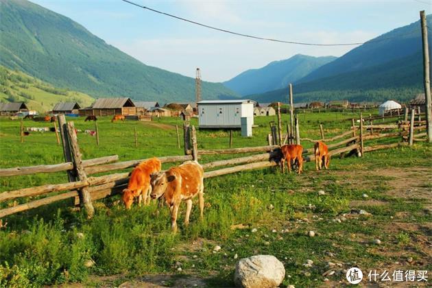 回归原始之美--乡村之旅