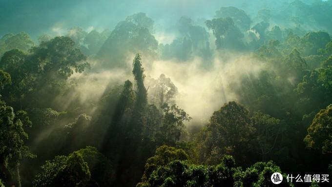 BBC出品,10部震撼你心灵的自然类纪录片