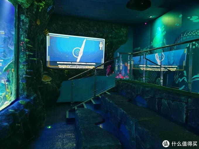给孩子生动的海洋生物课:沈阳海洋探索中心探秘
