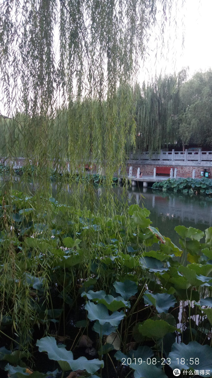 浅尝许昌,一座慢生活的小城