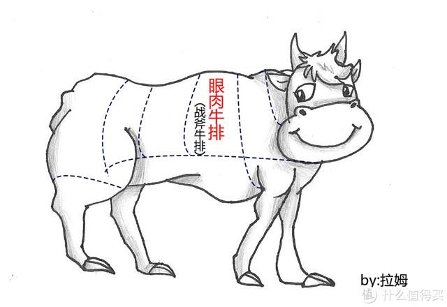 吃牛排咯!西冷牛排、眼肉牛排、菲力牛排哪家强?