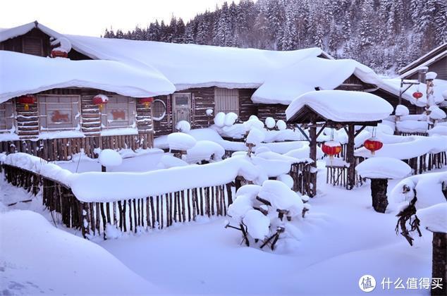 雪景那么美,不如一起去看雪
