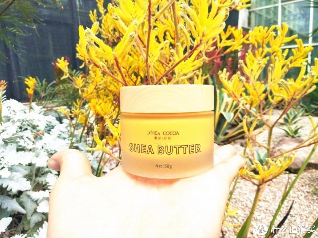有机护肤:SHEACOCOA乳木果油使用报告