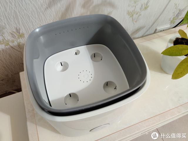 能种花的蓝主角空气净化器:静享健康家居,绿色生活