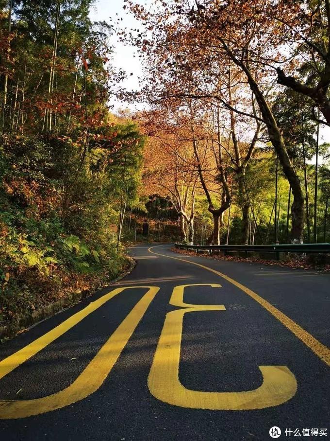 看红枫何必千里迢迢去日本?莫干山的秋天同样美!