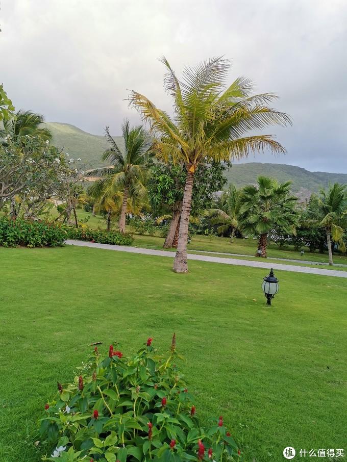 酒店就是大花园