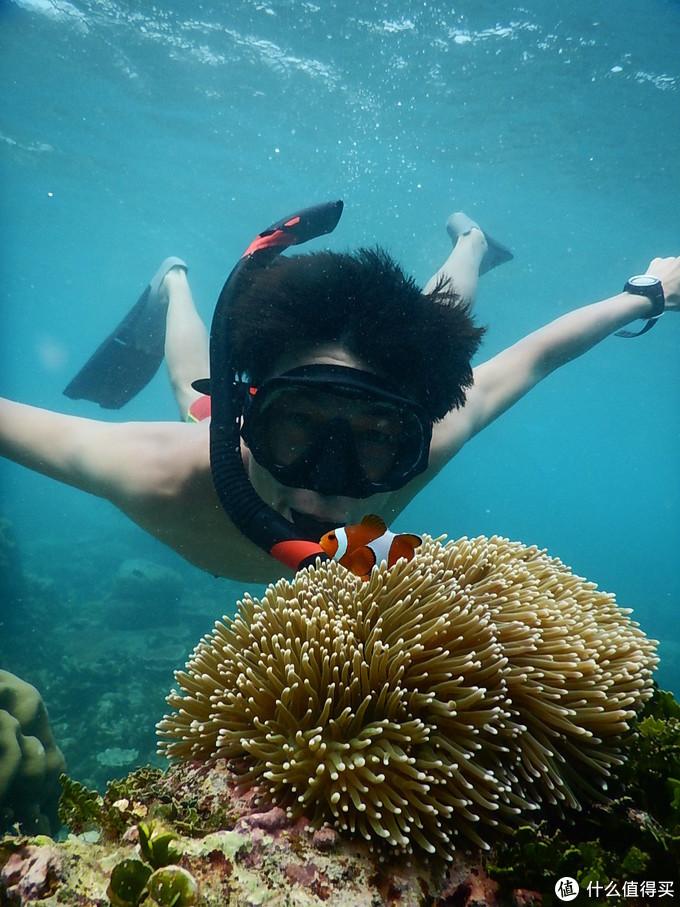 乘一艘慢船去爪哇,寻找我的尘世天堂