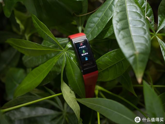 人无我有、人有我精的超规格压制:HUAWEI 华为手环4 Pro  到站秀