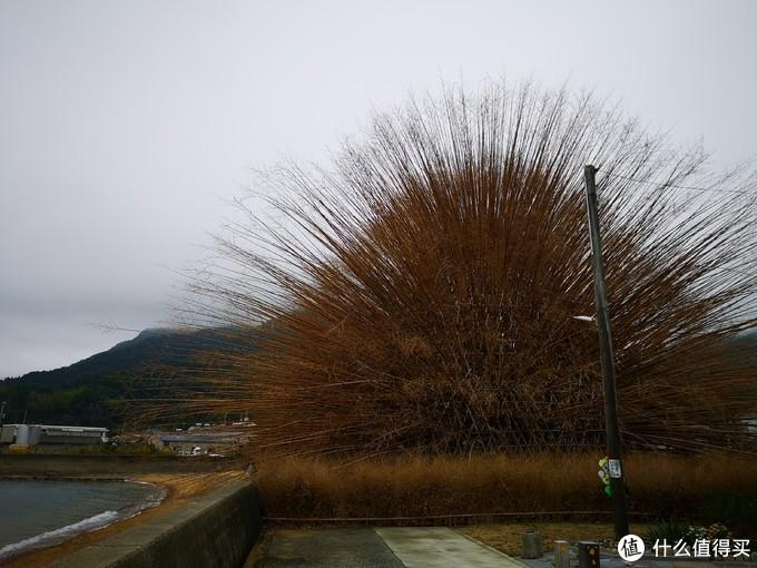 两位台湾艺术家都是以竹为介质