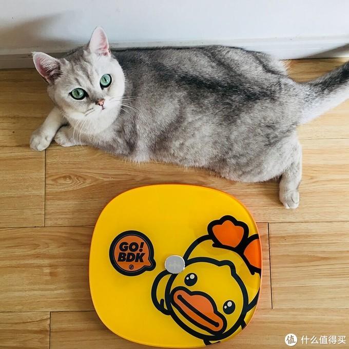 乐心 XB.Duck小黄鸭联名体脂秤S11:颜值与功能并存,直击肥肉大本营!