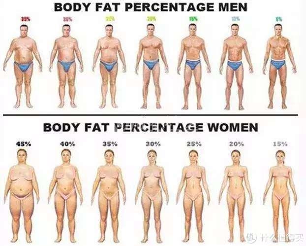 我是怎么从一个194斤的死胖纸减成162斤的精壮……胖纸的(内含真人秀)