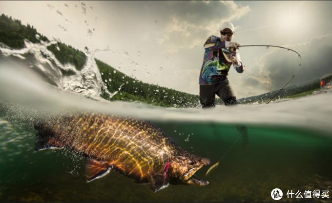 路亚主要对象鱼为掠食性鱼类,淡水鲈、桂鱼、翘嘴、马口等