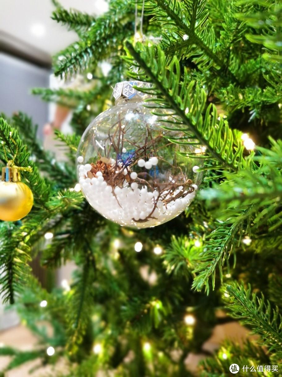 圣诞节&圣诞树购买尝试小记