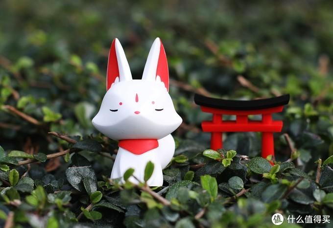 The Tiny Fortune 小福兽——告别2019愿未来每一天福气满满