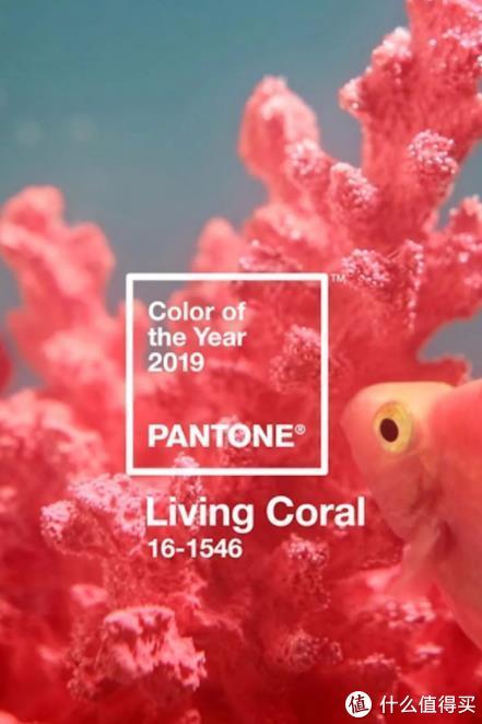 【自己收藏】2020年流行色公布!你的新家确定不用上这个颜色?