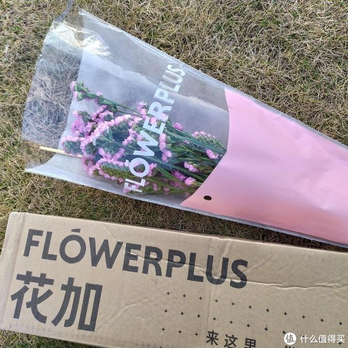 FlowerPlus花加 简花订花体验