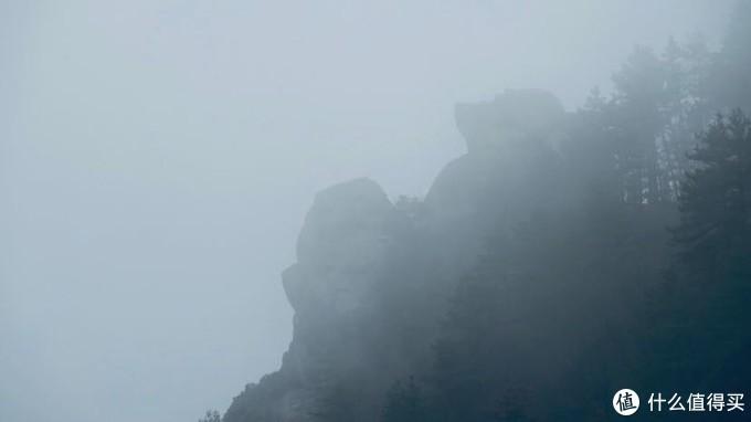 庐山印象4:雾凇、三宝树、美庐、庐山博物馆
