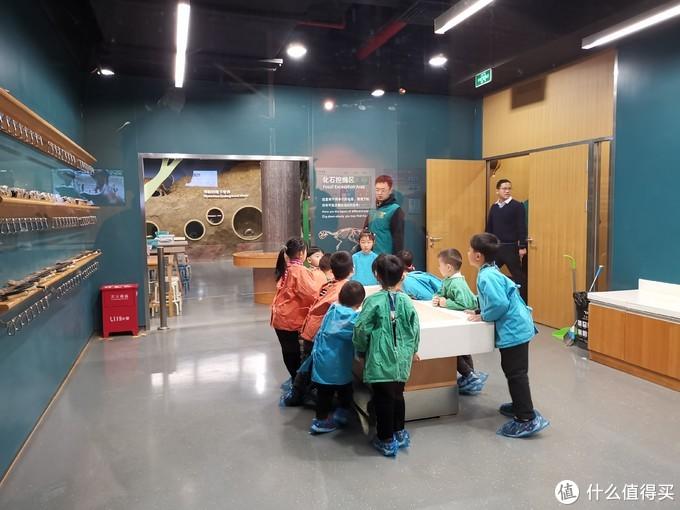 上海遛娃 迪斯尼、自然博物馆、科技馆