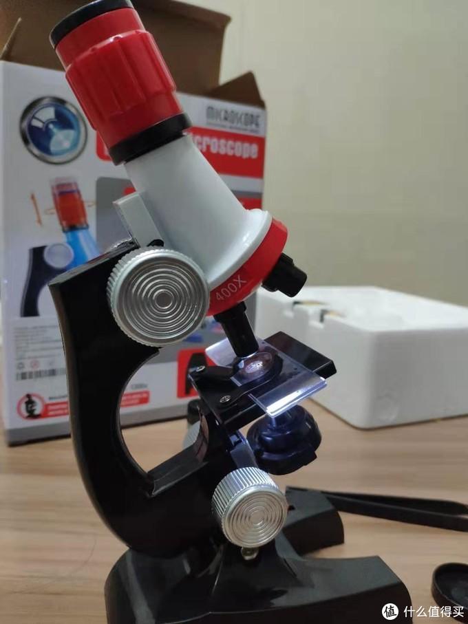 显微镜整体结构