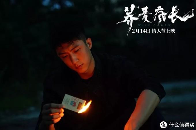 《荞麦疯长》提档2月14号情人节,马思纯钟楚𣌀黄景瑜为爱疯狂!