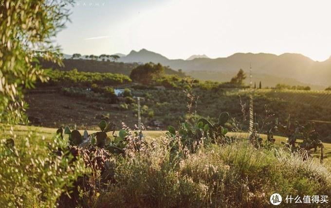 安达卢西亚好天气!板鸭国《老友记》与吃饱狗粮的阳光七日行~